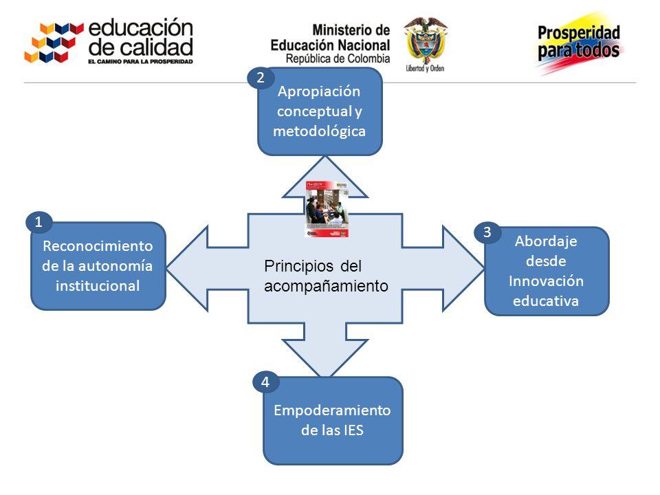 Principios del acompañamiento Abordaje desde Innovación educativa Reconocimiento de la autonomía institucional Apropiación conceptual y metodológica Empoderamiento de las IES 1 2 3 4