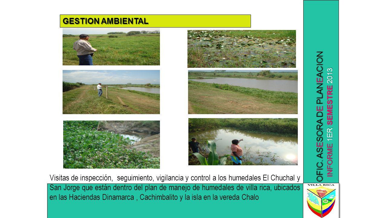 INFORME 1ER SEMESTRE 2013 OFIC. ASESORA DE PLANEACION GESTION AMBIENTAL Visitas de inspección, seguimiento, vigilancia y control a los humedales El Ch