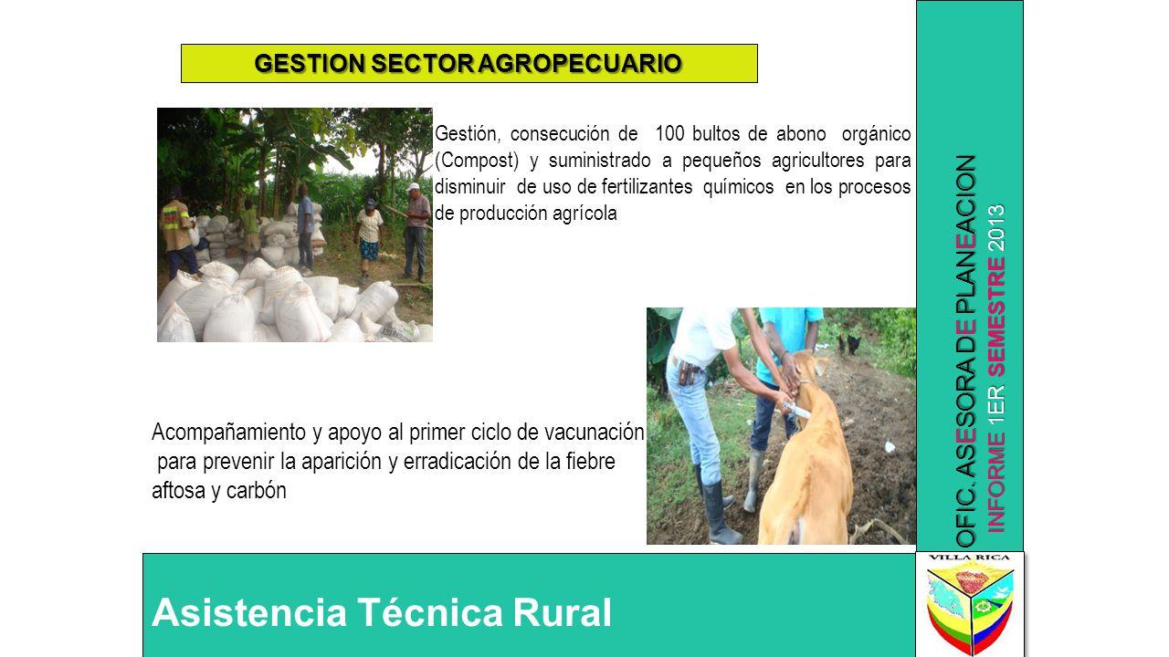 INFORME 1ER SEMESTRE 2013 OFIC. ASESORA DE PLANEACION GESTION SECTOR AGROPECUARIO Gestión, consecución de 100 bultos de abono orgánico (Compost) y sum
