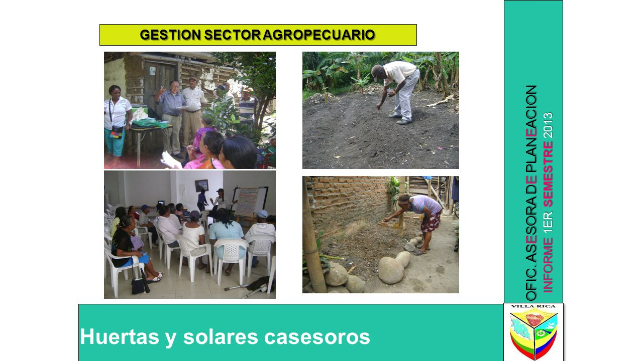 INFORME 1ER SEMESTRE 2013 OFIC. ASESORA DE PLANEACION Huertas y solares casesoros GESTION SECTOR AGROPECUARIO