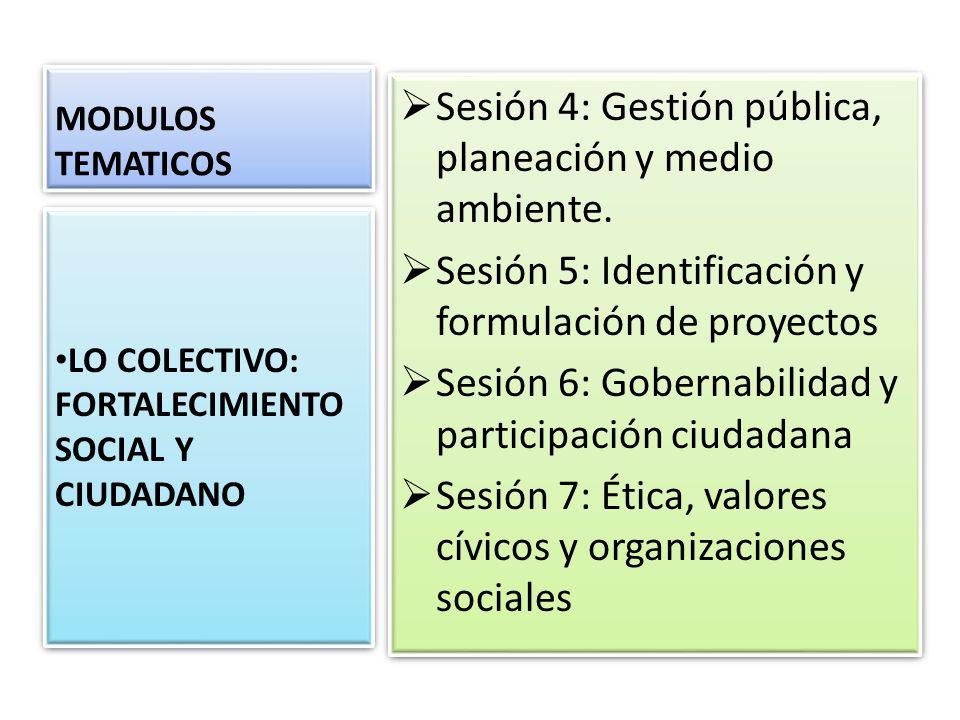 MODULOS TEMATICOS Sesión 4: Gestión pública, planeación y medio ambiente. Sesión 5: Identificación y formulación de proyectos Sesión 6: Gobernabilidad