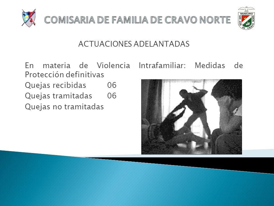 ACTUACIONES ADELANTADAS En materia de Custodias: Resoluciones de Asignación Quejas recibidas 24 Quejas tramitadas24 Quejas no tramitadas