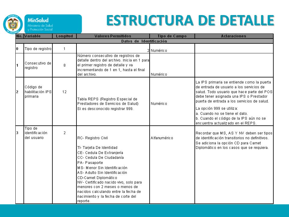 ESTRUCTURA DE DETALLE