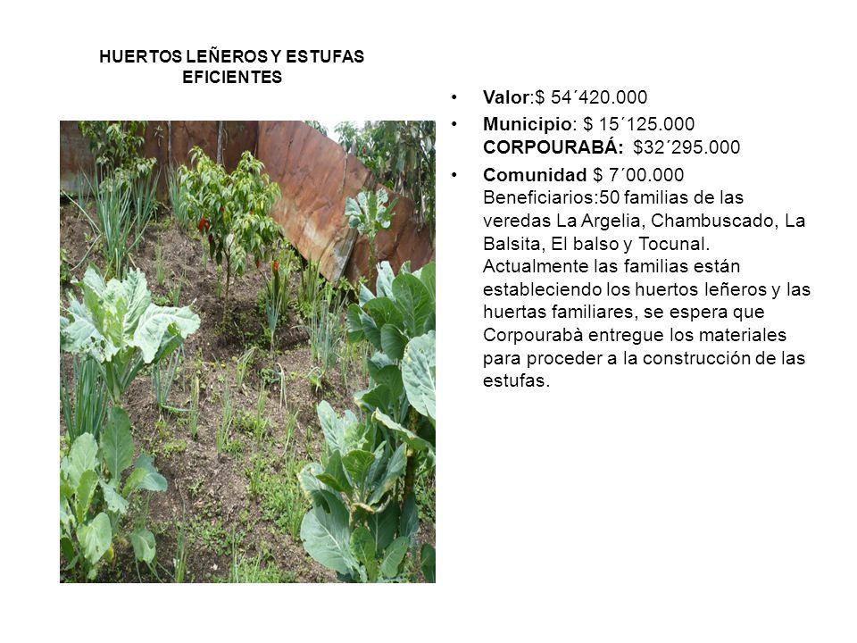 UNA HUERTA PARA TODOS ConvenioFAO-MANA-MUNICIPIO, el municipio hizo un aporte de $10´000.000 en efectivo Proyecto que se viene FAO-MANA: 30´000.000 PARA EL PERÍODO.