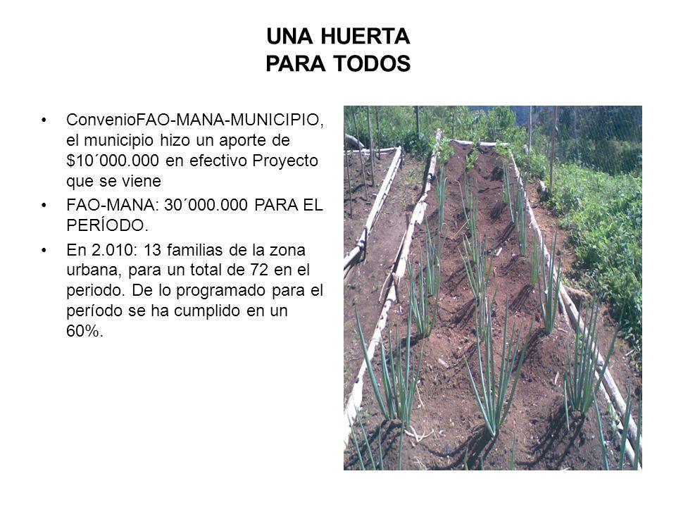 UNA HUERTA PARA TODOS ConvenioFAO-MANA-MUNICIPIO, el municipio hizo un aporte de $10´000.000 en efectivo Proyecto que se viene FAO-MANA: 30´000.000 PA