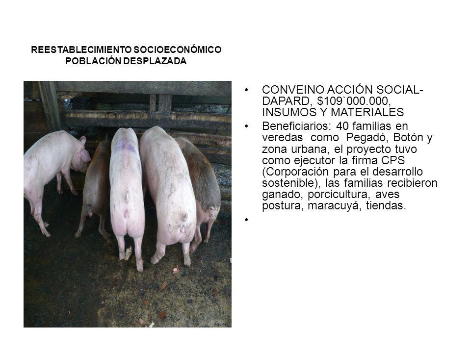 ESTABLECIMIENTO DE UNA AGROINDUSTRIA PANELERA EN LA VEREDA ANTADÓ.