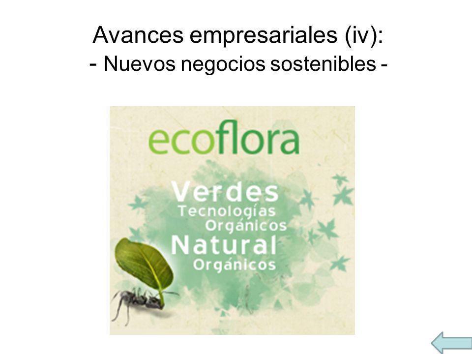 Avances empresariales (iv): - Nuevos negocios sostenibles -