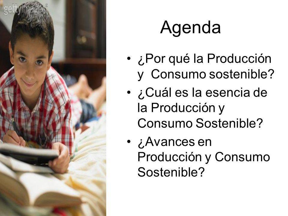 Agenda ¿Por qué la Producción y Consumo sostenible? ¿Cuál es la esencia de la Producción y Consumo Sostenible? ¿Avances en Producción y Consumo Sosten
