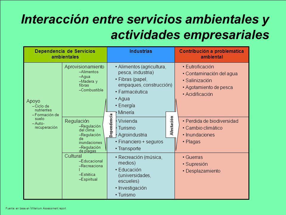 Interacción entre servicios ambientales y actividades empresariales Fuente: en base en Millenium Assessment report Apoyo –Ciclo de nutrientes –Formaci