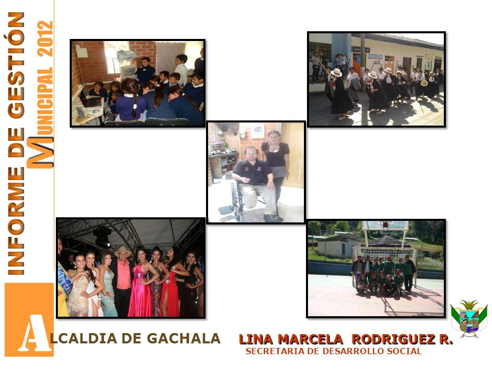 M M UNICIPAL 2012 A LINA MARCELA RODRIGUEZ R. LCALDIA DE GACHALA LINA MARCELA RODRIGUEZ R. SECRETARIA DE DESARROLLO SOCIAL