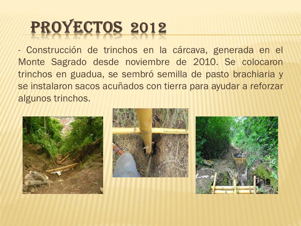 - Construcción de trinchos en la cárcava, generada en el Monte Sagrado desde noviembre de 2010. Se colocaron trinchos en guadua, se sembró semilla de