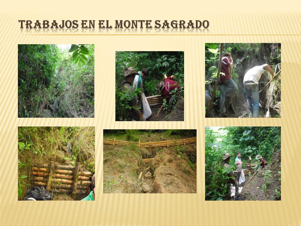 Proyecto repoblamiento bovino, presentado a la Secretaría de Agricultura Departamental.