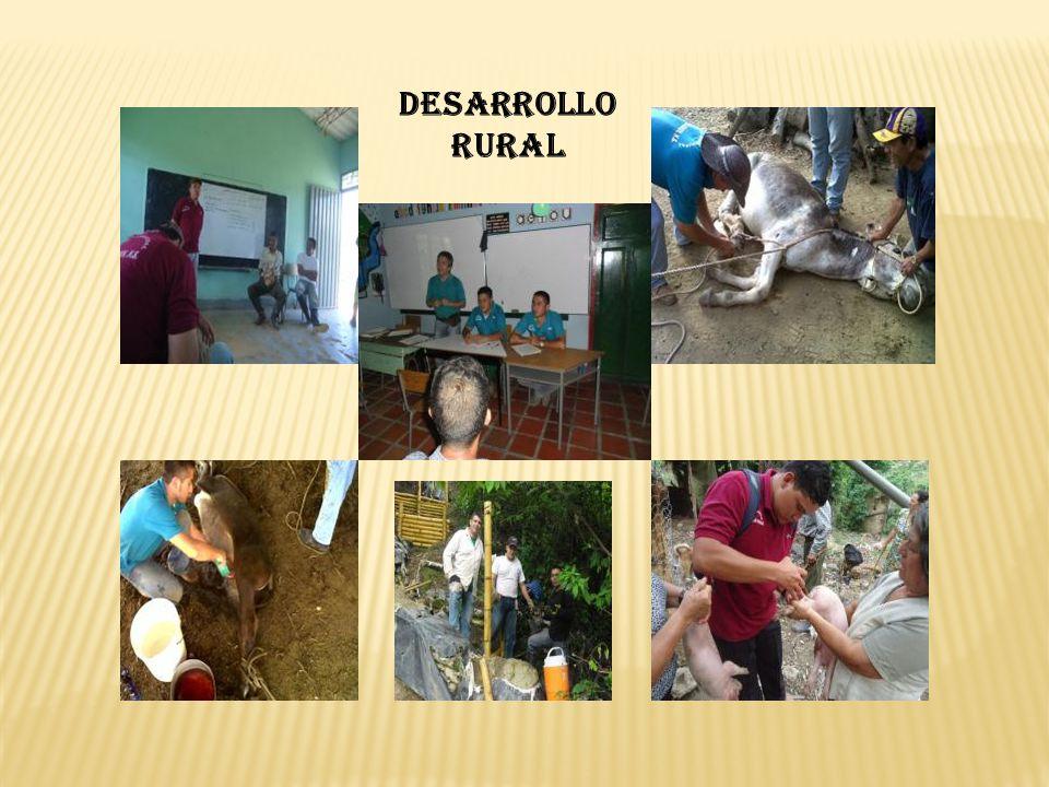 - Reuniones en Ocaña con Incoder y Ascamcat (Titulación de tierras y otros temas de desarrollo rural).