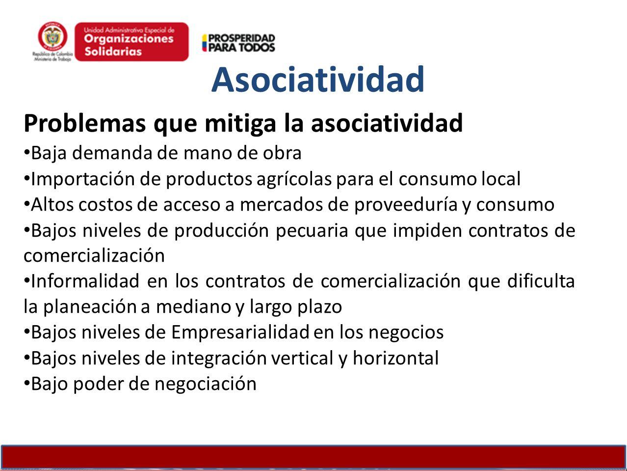 Problemas que mitiga la asociatividad Baja demanda de mano de obra Importación de productos agrícolas para el consumo local Altos costos de acceso a m
