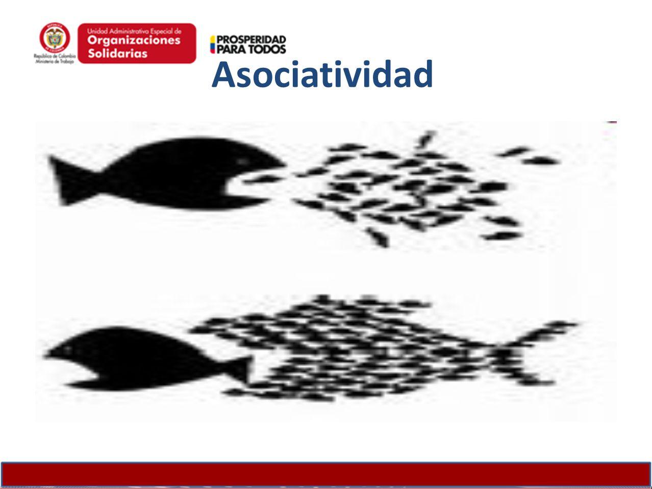 ConfianzaSolidaridad Colaboración Compromiso Responsabilidad Individualismo Desconfianza Oportunismo Asociatividad