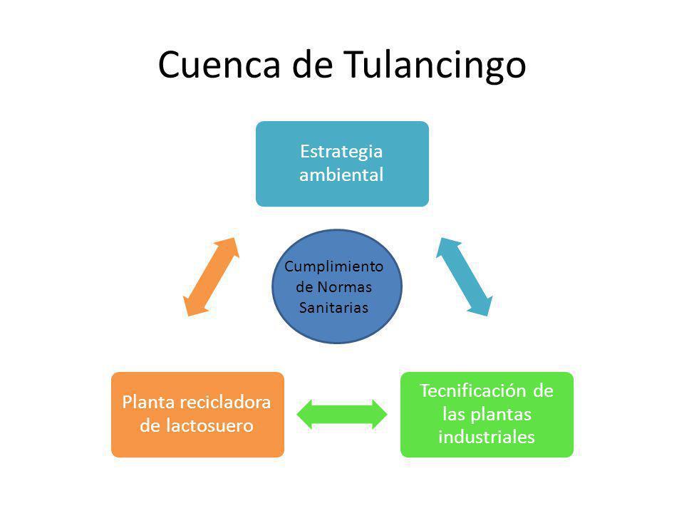 Cuenca de Tulancingo Estrategia ambiental Tecnificación de las plantas industriales Planta recicladora de lactosuero Cumplimiento de Normas Sanitarias