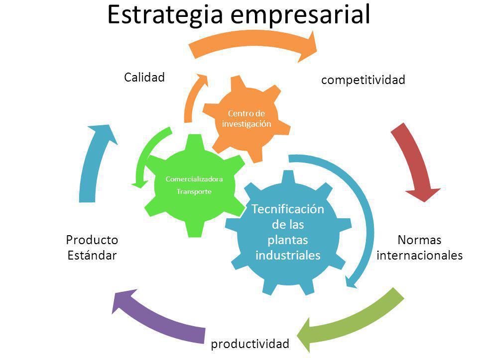 competitividad Normas internacionales productividad Producto Estándar Calidad Tecnificación de las plantas industriales Comercializadora Transporte Centro de investigación Estrategia empresarial