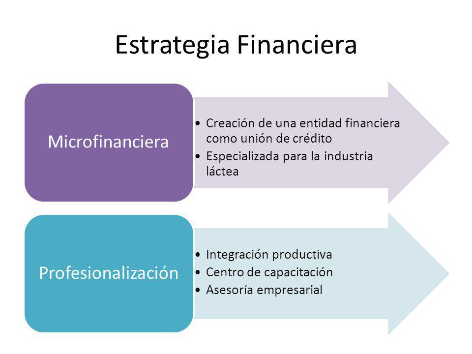 Estrategia Financiera Creación de una entidad financiera como unión de crédito Especializada para la industria láctea Microfinanciera Integración productiva Centro de capacitación Asesoría empresarial Profesionalización