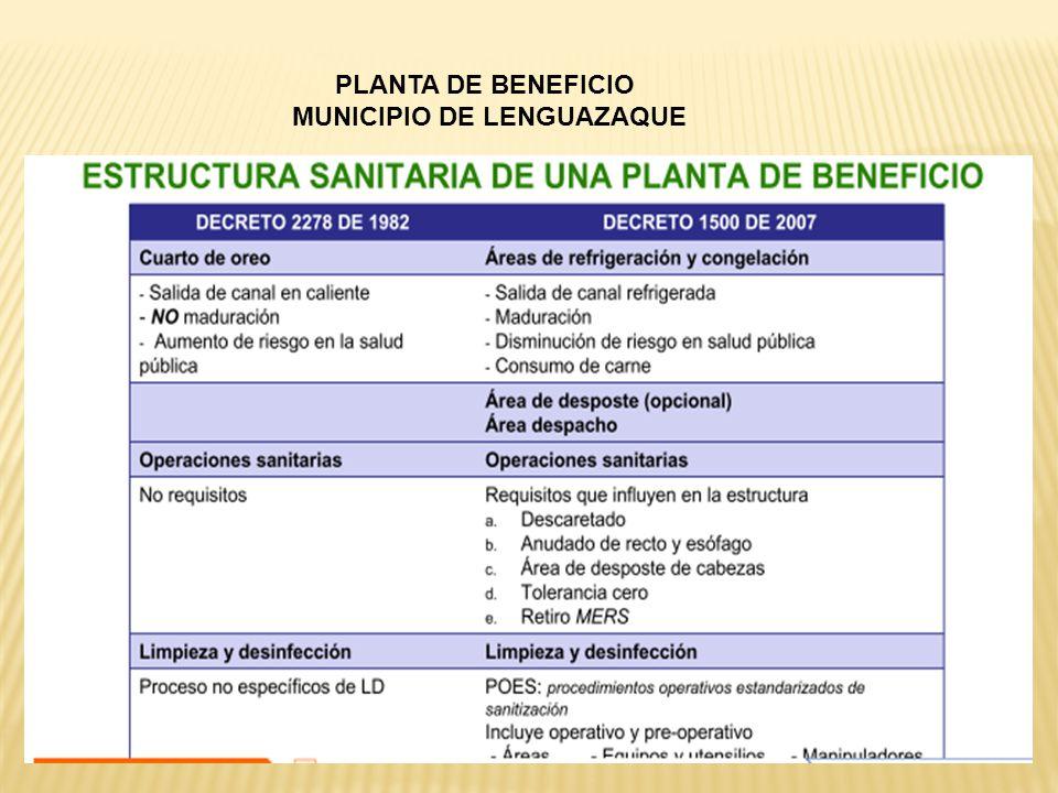 PLANTA DE BENEFICIO MUNICIPIO DE LENGUAZAQUE