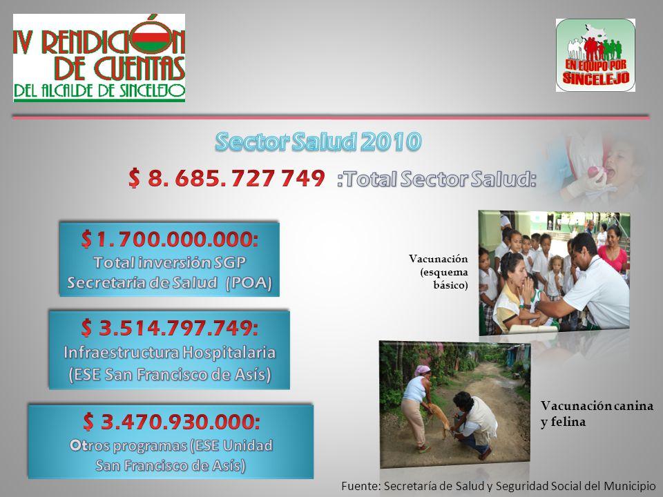 Fuente: Secretaría de Salud y Seguridad Social del Municipio Vacunación canina y felina Vacunación (esquema básico)