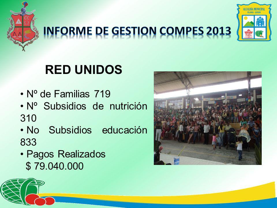 RED UNIDOS Nº de Familias 719 Nº Subsidios de nutrición 310 No Subsidios educación 833 Pagos Realizados $ 79.040.000