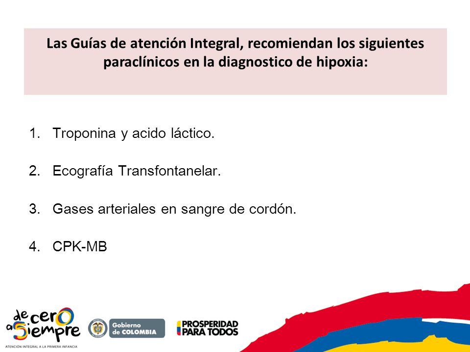 Las Guías de atención Integral, recomiendan los siguientes paraclínicos en la diagnostico de hipoxia: 1.Troponina y acido láctico. 2.Ecografía Transfo