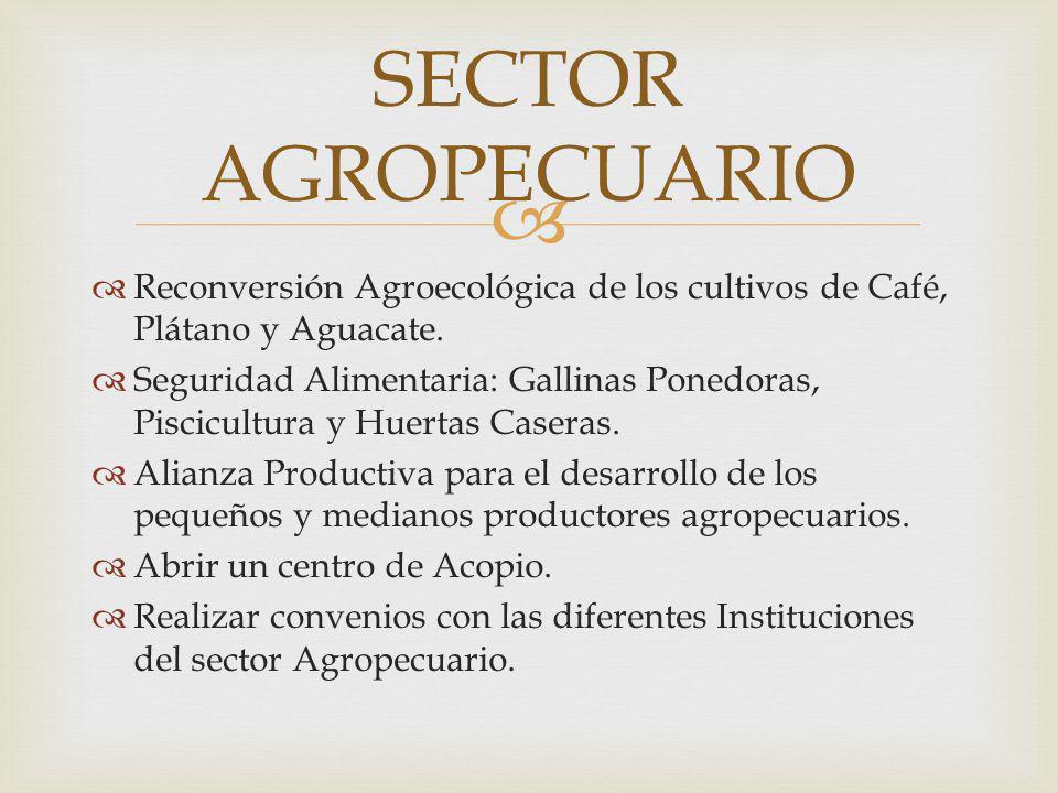 Reconversión Agroecológica de los cultivos de Café, Plátano y Aguacate. Seguridad Alimentaria: Gallinas Ponedoras, Piscicultura y Huertas Caseras. Ali
