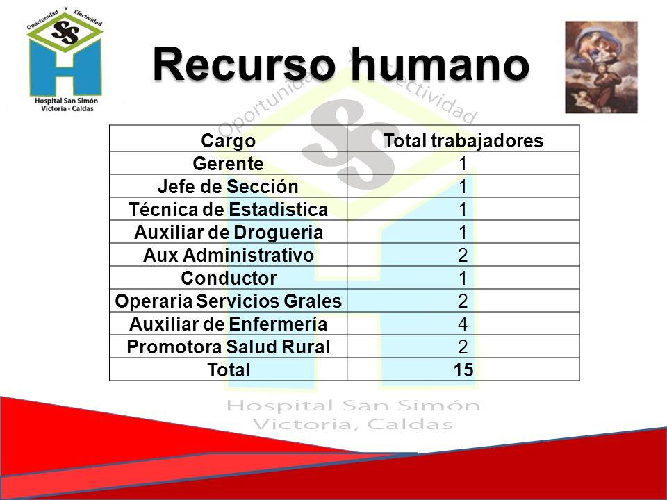 CargoTotal trabajadores Gerente1 Jefe de Sección1 Técnica de Estadistica1 Auxiliar de Drogueria1 Aux Administrativo2 Conductor1 Operaria Servicios Gra