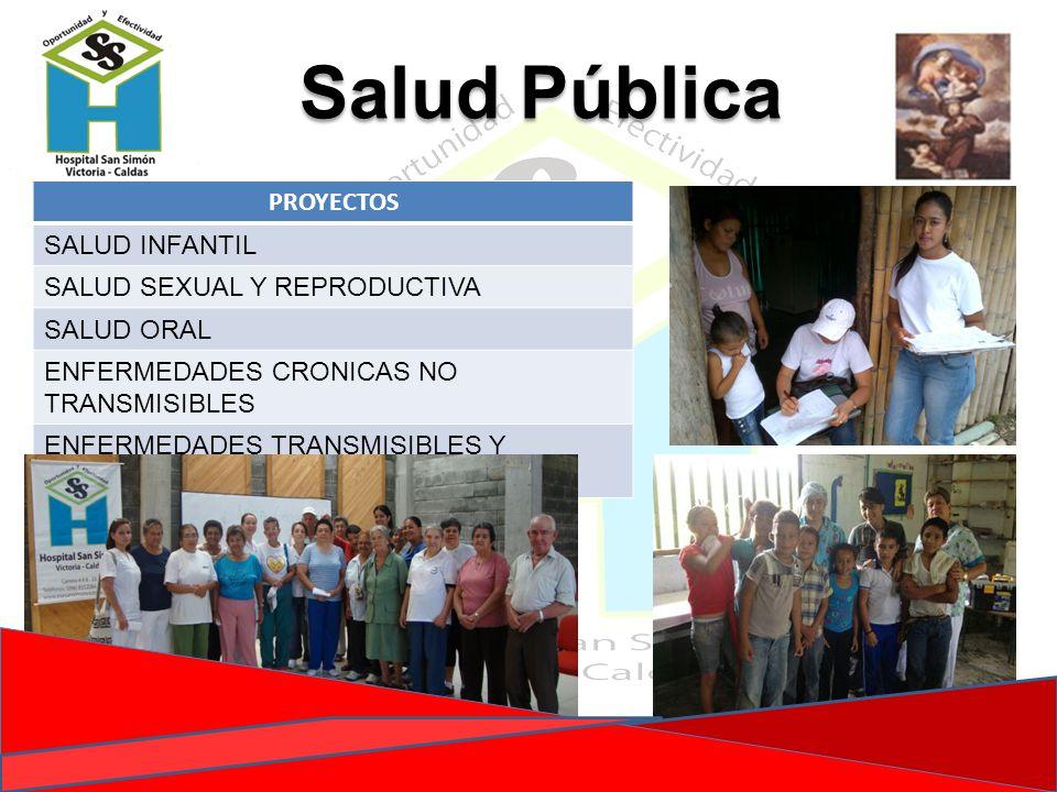 PROYECTOS SALUD INFANTIL SALUD SEXUAL Y REPRODUCTIVA SALUD ORAL ENFERMEDADES CRONICAS NO TRANSMISIBLES ENFERMEDADES TRANSMISIBLES Y ZOONOSIS Salud Púb