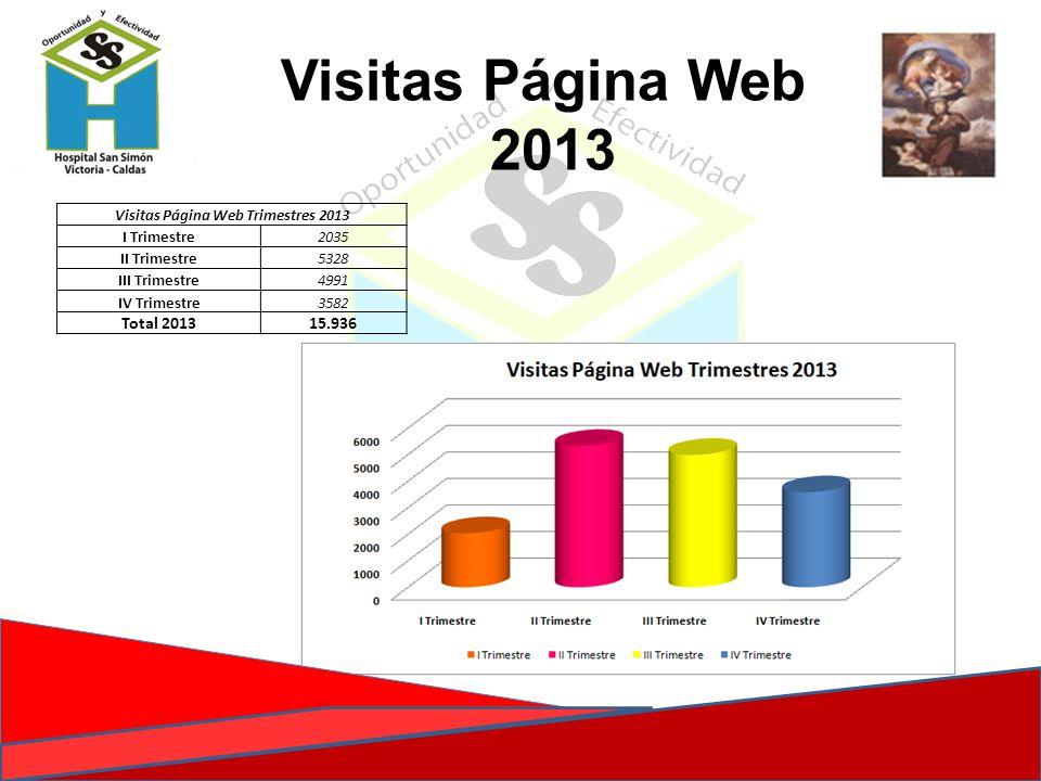 Visitas Página Web Trimestres 2013 I Trimestre2035 II Trimestre5328 III Trimestre4991 IV Trimestre3582 Total 201315.936 Visitas Página Web 2013