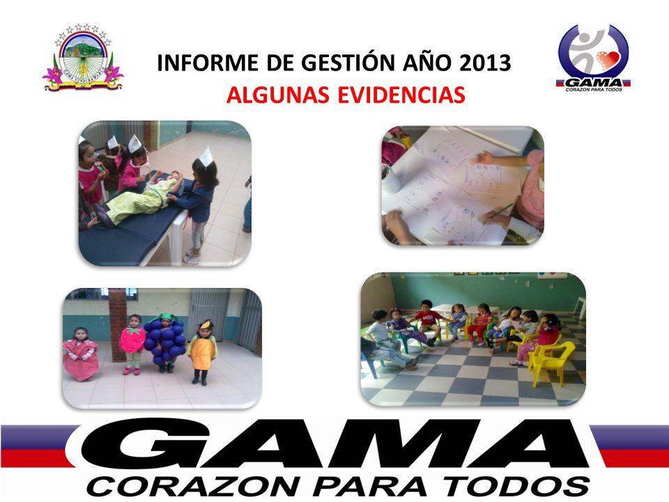 INFORME DE GESTIÓN AÑO 2013 ALGUNAS EVIDENCIAS