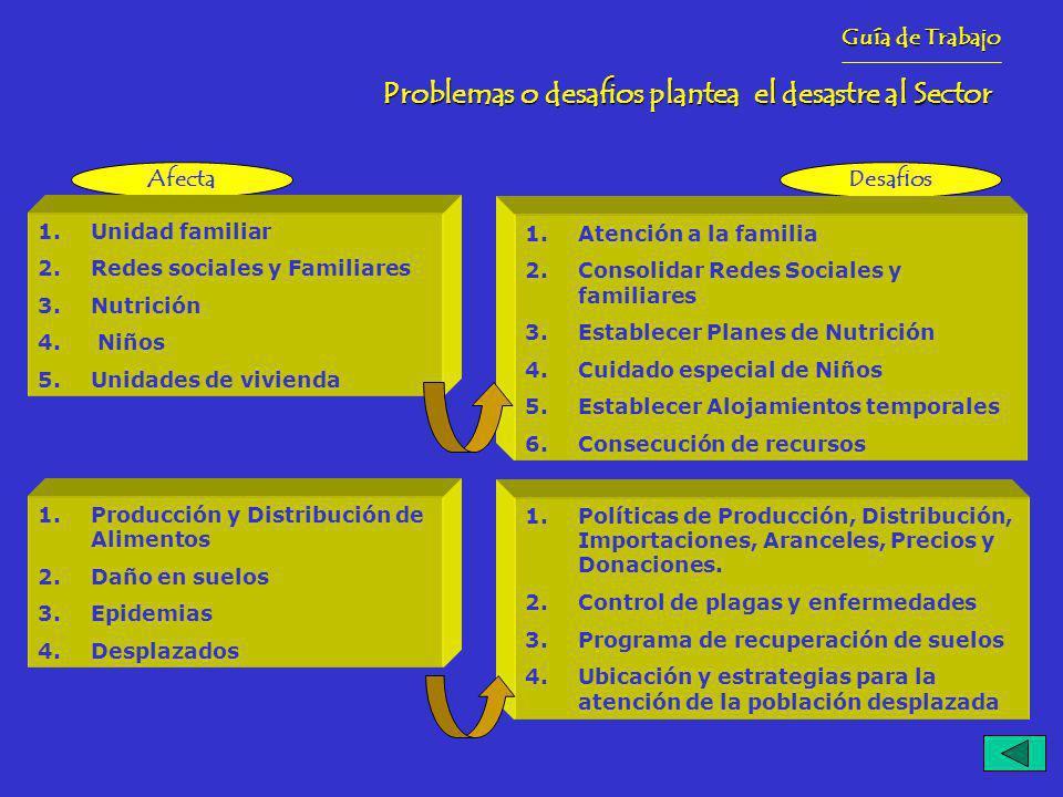 Problemas o desafios plantea el desastre al Sector Guía de Trabajo AfectaDesafios 1.Unidad familiar 2.Redes sociales y Familiares 3.Nutrición 4.