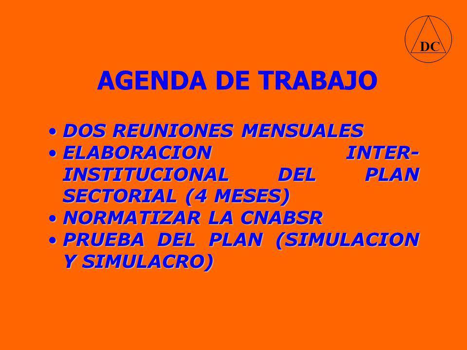 AGENDA DE TRABAJO DC DOS REUNIONES MENSUALESDOS REUNIONES MENSUALES ELABORACION INTER- INSTITUCIONAL DEL PLAN SECTORIAL (4 MESES)ELABORACION INTER- INSTITUCIONAL DEL PLAN SECTORIAL (4 MESES) NORMATIZAR LA CNABSRNORMATIZAR LA CNABSR PRUEBA DEL PLAN (SIMULACION Y SIMULACRO)PRUEBA DEL PLAN (SIMULACION Y SIMULACRO)