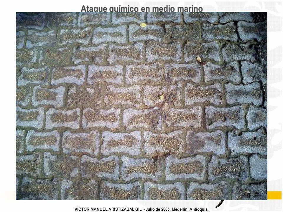 VÍCTOR MANUEL ARISTIZÁBAL GIL - Julio de 2005, Medellín, Antioquia. Ataque químico en medio marino