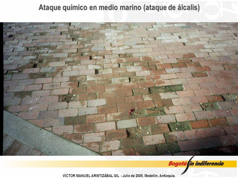 VÍCTOR MANUEL ARISTIZÁBAL GIL - Julio de 2005, Medellín, Antioquia. Ataque químico en medio marino (ataque de álcalis)