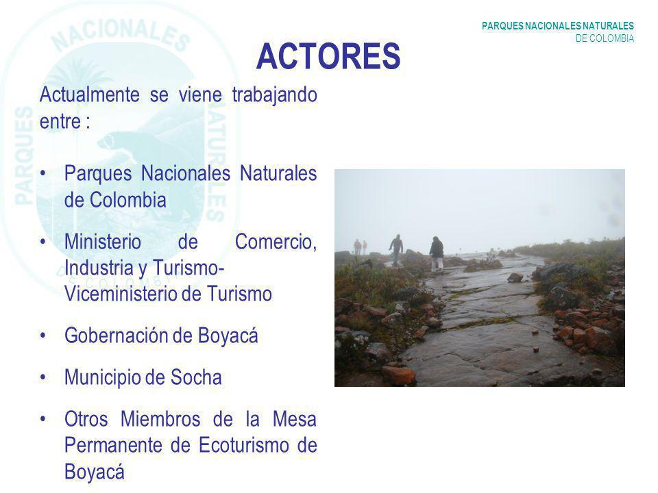 PARQUES NACIONALES NATURALES DE COLOMBIA ACTORES Actualmente se viene trabajando entre : Parques Nacionales Naturales de Colombia Ministerio de Comercio, Industria y Turismo- Viceministerio de Turismo Gobernación de Boyacá Municipio de Socha Otros Miembros de la Mesa Permanente de Ecoturismo de Boyacá