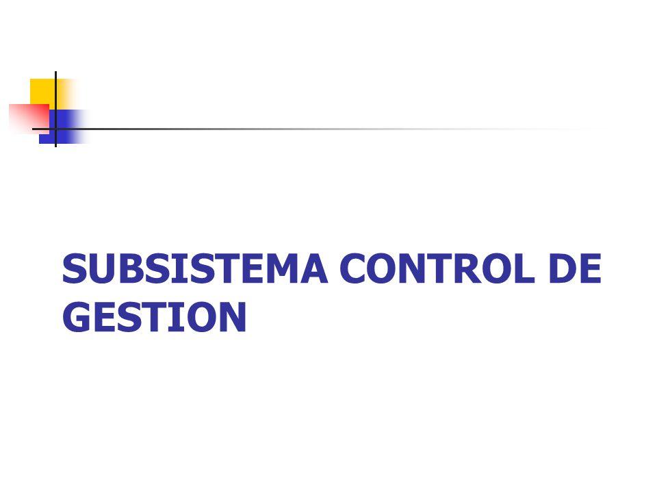 SUBSISTEMA CONTROL DE GESTION