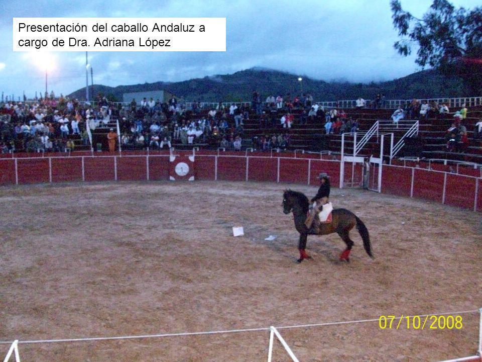 Presentación del caballo Andaluz a cargo de Dra. Adriana López