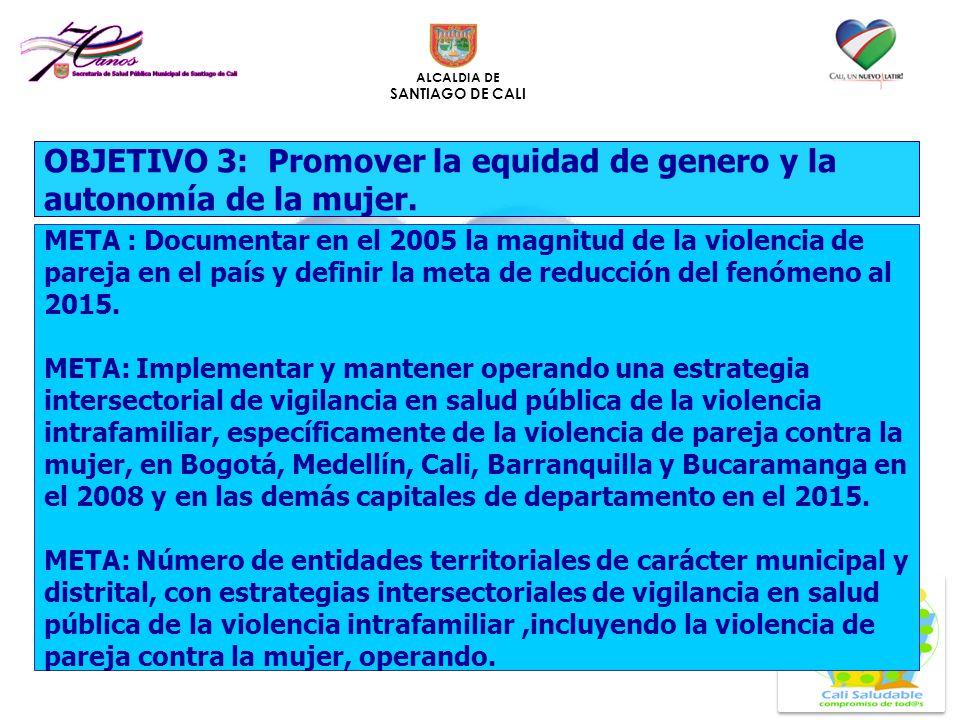 ALCALDIA DE SANTIAGO DE CALI OBJETIVO 3: Promover la equidad de genero y la autonomía de la mujer. META : Documentar en el 2005 la magnitud de la viol