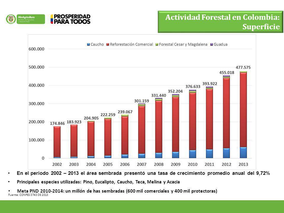 Fuente: CONPES 3743 DE 2013 Actividad Forestal en Colombia: Superficie En el periodo 2002 – 2013 el área sembrada presentó una tasa de crecimiento pro