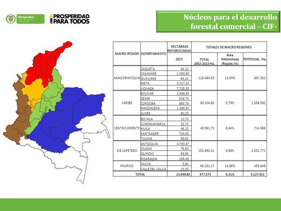Núcleos para el desarrollo forestal comercial – CIF- MACRO REGIÓNDEPARTAMENTO HECTÁREAS REFORESTADAS TOTALES DE MACRO REGIONES 2013 TOTAL 2002-2013 Ha