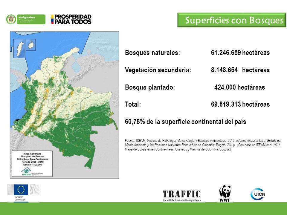 Bosques naturales: 61.246.659 hectáreas Vegetación secundaria:8.148.654 hectáreas Bosque plantado: 424.000 hectáreas Total: 69.819.313 hectáreas 60,78