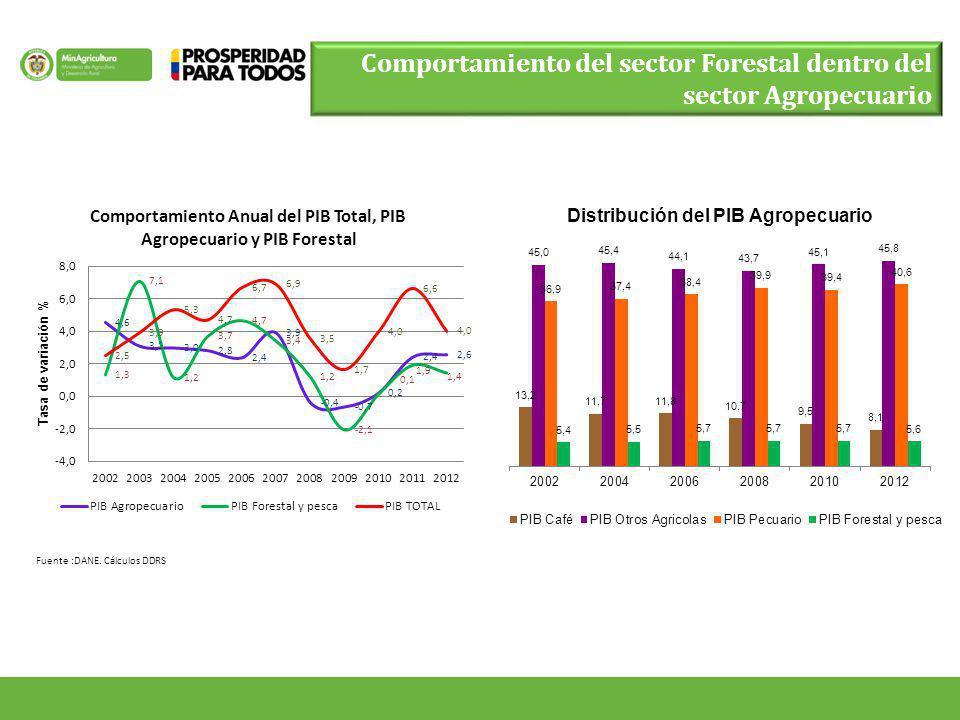Fuente :DANE. Cálculos DDRS Comportamiento del sector Forestal dentro del sector Agropecuario