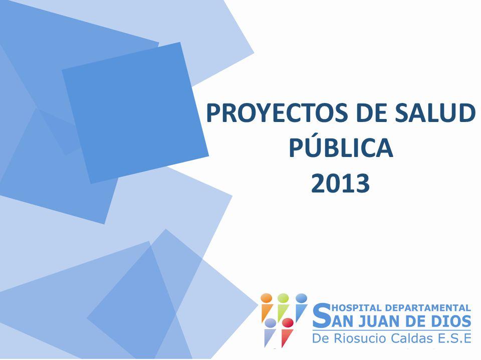 PROYECTOS DE SALUD PÚBLICA 2013