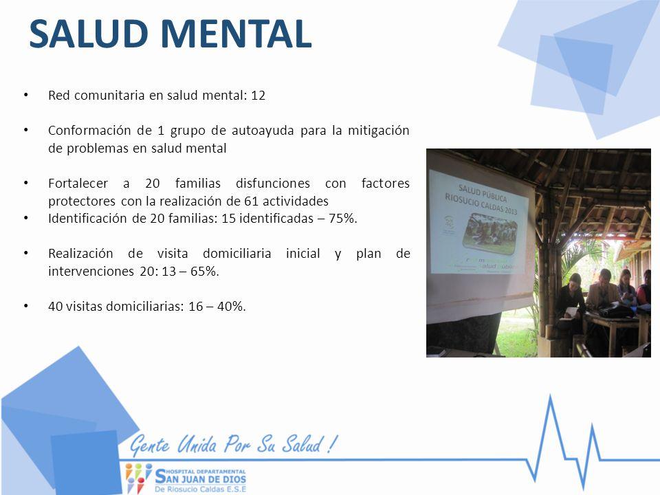 SALUD MENTAL Red comunitaria en salud mental: 12 Conformación de 1 grupo de autoayuda para la mitigación de problemas en salud mental Fortalecer a 20