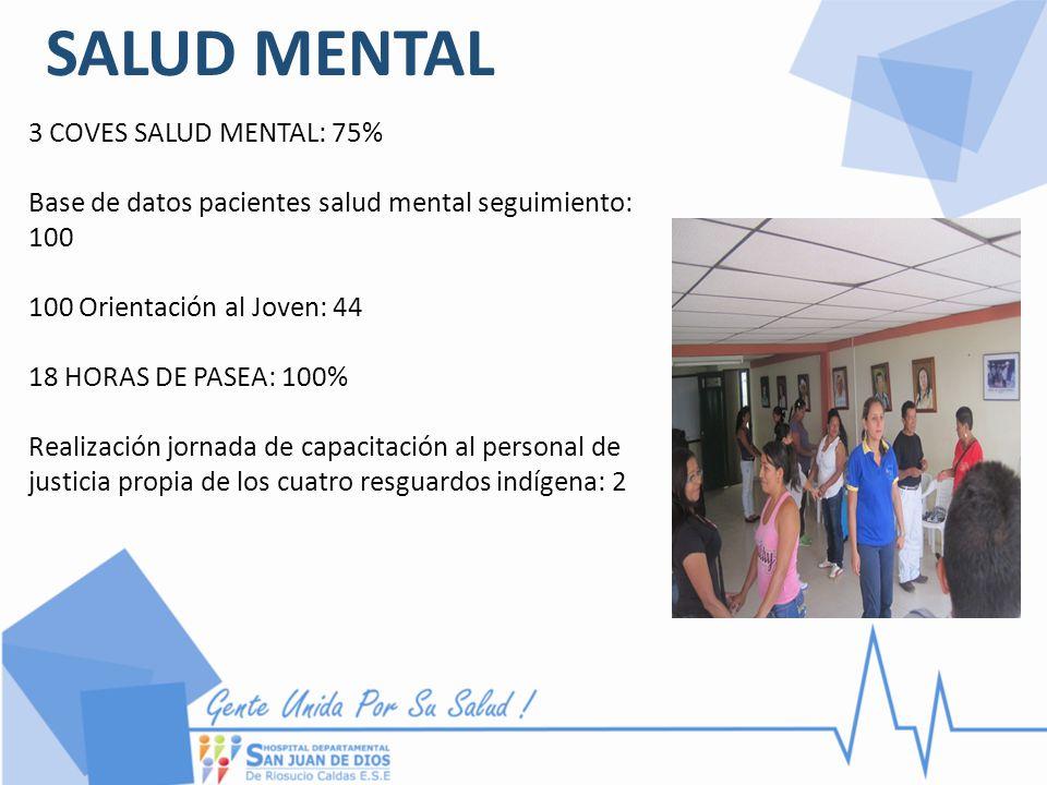 SALUD MENTAL 3 COVES SALUD MENTAL: 75% Base de datos pacientes salud mental seguimiento: 100 100 Orientación al Joven: 44 18 HORAS DE PASEA: 100% Real