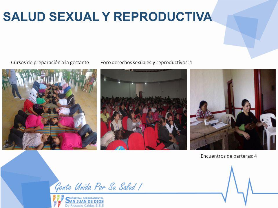 SALUD SEXUAL Y REPRODUCTIVA Cursos de preparación a la gestanteForo derechos sexuales y reproductivos: 1 Encuentros de parteras: 4