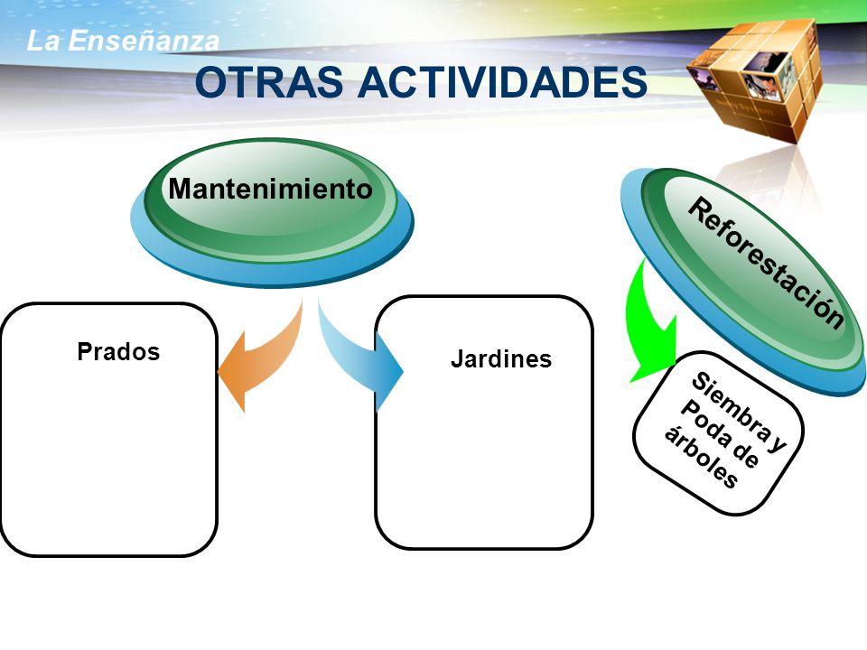 La Enseñanza OTRAS ACTIVIDADES Prados Mantenimiento Jardines Reforestación Siembra y Poda de árboles