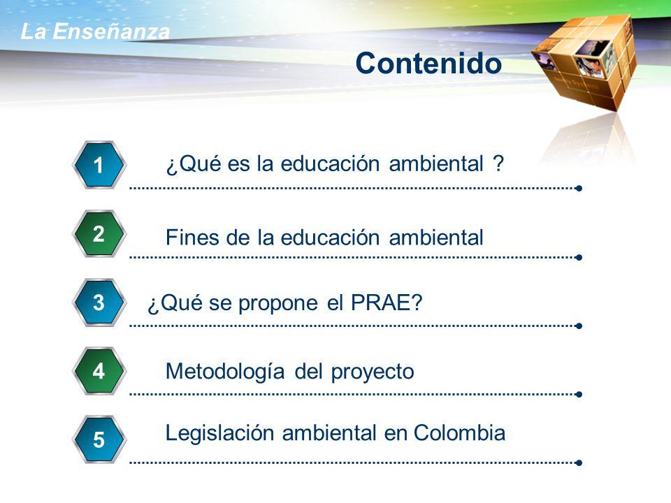 La Enseñanza Contenido ¿Qué es la educación ambiental ? 1 Fines de la educación ambiental 2 ¿Qué se propone el PRAE? 3 Metodología del proyecto 4 5 Le