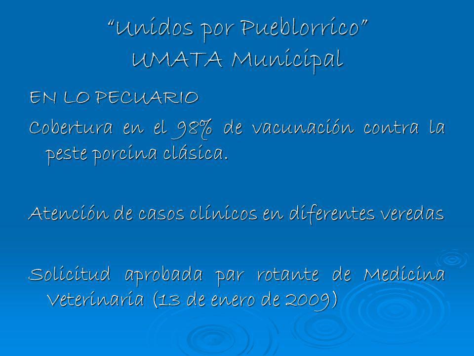 Unidos por Pueblorrico UMATA Municipal EN LO PECUARIO Cobertura en el 98% de vacunación contra la peste porcina clásica. Atención de casos clínicos en